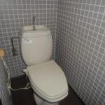 セロナトイレ
